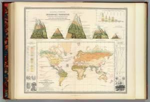 Geographical Distribution Of Indigenous Vegetation, Arthur Henfrey, Edinburgh,1854, Image frоm David Rumsey Map Collection