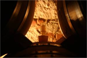 Barrels in Tokaj Cellar, Image from Sauska Wines