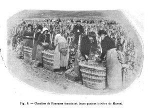 Fig. 8 - Chantier de Pareuses terminant leurs paniers (riviere de Marne). [1]