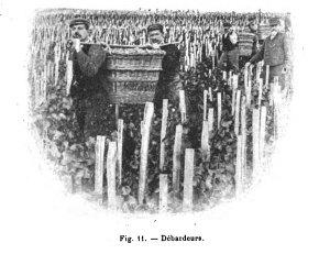Fig. 11. - Debardeurs. [1]