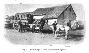 Fig. 13. - Voiture charge de paniers gorbes se rendant au pressoir. [1]