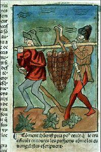 La grappe de la Terre Promise apportée par les espions de Moïse. Speculum humanae salvationis. 1482. #Rés Inc 1043, f. 422v-423. Bibliotheque Muunicipale de Lyon.