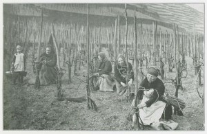 Women bending the vines.