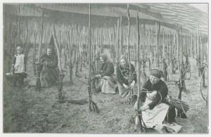Women bending the vines.