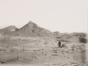 Ancient vineyard seen from foot of tamarisk cone to west-north-west [Niya-Site], 18 January 1931. Image from IDP.