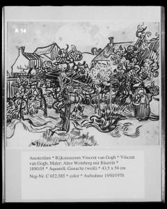 Alter Weinberg mit Bäuerin.  Vincent van Gogh. 1890. [1]