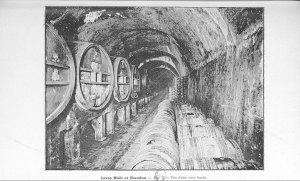 Fig. 2. Vue d'une cave haute. [1]