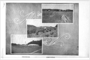 Potential vineyard in the middle farm scene. c. 1910. [3]
