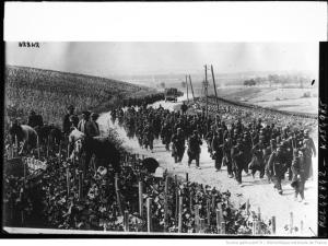 French soldiers marching to the front through a vineyard. 1914. [1]