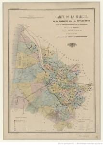Carte de la marche... du phylloxera dans le département de la Gironde / faite par A.-H. Trimoulet. 1878. [1]