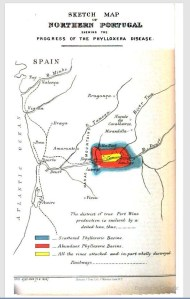 Sketch Map of Northern Portugal Shewing the Progress of the Phylloxera Disease. 1880. [1]