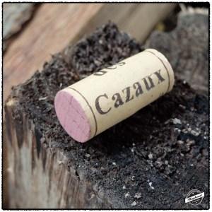 Cazaux2