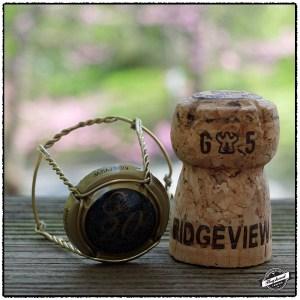 Ridgeview2