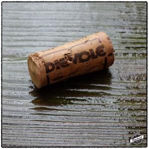 Dievole2